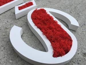 logo vegetal